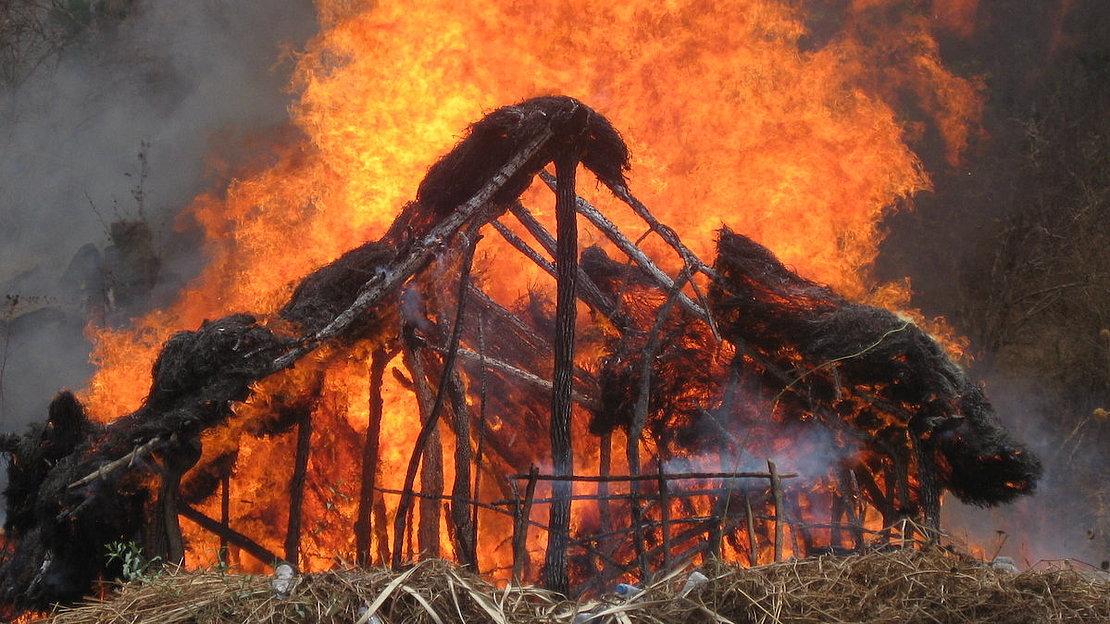 Burning Poacher's camp